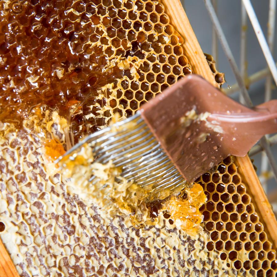 Lubbeekse honing - biekeskorf.be